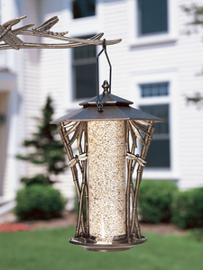 "Whitehall Products - 12"" Dragonfly Silhouette Feeder - French Bronze"
