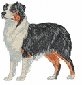 aussie053 Australian Shepherd (small or large design)