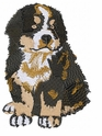 bmd006 Bernese Mountain Dog (small or large design)