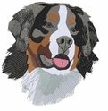 bmd008 Bernese Mountain Dog (small or large design)