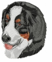 bmd012 Bernese Mountain Dog (small or large design)