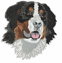 bmd020 Bernese Mountain Dog (small or large design)