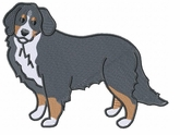 bmd023 Bernese Mountain Dog (small or large design)