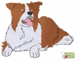 bordercollie120 Border Collie (small or large design)