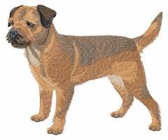 borter001 Border Terrier (small or large design) - Click to enlarge