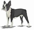 boston031 Boston Terrier (small or large design)
