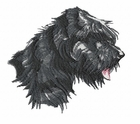 bouvier004 Bouvier des Flandres (small or large design)