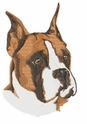 boxer027 Boxer (small or large design)