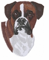 boxer040 Boxer (small or large design)
