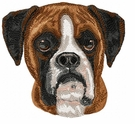 boxer045 Boxer (small or large design)