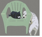cat111 Dog with Cat on chair (small or large design)