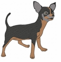 chihuahua002 Chihuahua (small or large design)