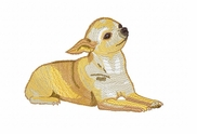 chihuahua023 Chihuahua (small or large design)