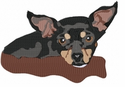 chihuahua074 Chihuahua (small or large design)