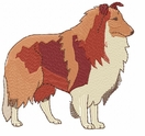 collie018 Collie (small or large design)