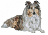 collie033 Collie (small or large design)