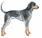 coonhound015 Coonhound  (small or large design)