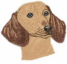 dachs020 Dachshund (small or large design)