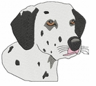 dal024 Dalmatian (small or large design)