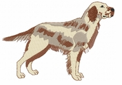 engsetter004 English Setter (small or large design)