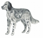 engsetter006 English Setter (small or large design)