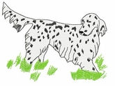 engsetter017 English Setter (small or large design)