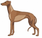 greyhound004 Greyhound   (small or large design)