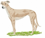 greyhound027 Greyhound   (small or large design)