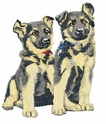 gsd030 German Shepherd Dog (small or large design)