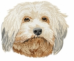 havanese002 Havanese (small or large design)
