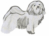 havanese006 Havanese (small or large design)