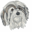 havanese014 Havanese (small or large design)