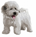 havanese020 Havanese (small or large design)