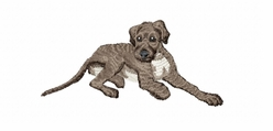 iwh002 Irish Wolfhound (small or large design)