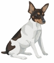 jrt006 Jack Russell /Parson Terrier (small or large design)