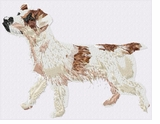jrt008 Jack Russell /Parson Terrier (small or large design)
