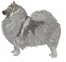 kees020 Keeshond (small or large design)