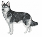 klee001 Alaskan Klee Kai (small or large design)