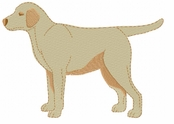 lab059 Labrador Retriever (small or large design)