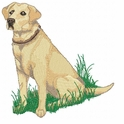 lab092 Labrador Retriever (small or large design)