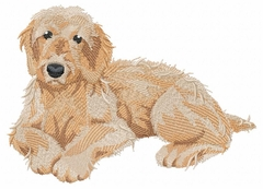 labra004 Labradoodle (small or large design) - Click to enlarge