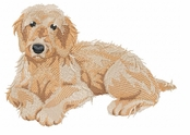 labra004 Labradoodle (small or large design)