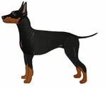 man007 Manchester Terrier (small or large design)