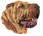 pei010 Chines Shar Pei (small or large design)