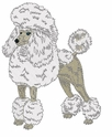 pood079 Poodle (small or large design)