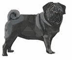 pug036 Pug   (small or large design)
