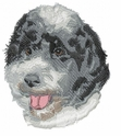 pwd003 Portuguese Water Dog (small or large design)