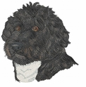 pwd004 Portuguese Water Dog (small or large design)
