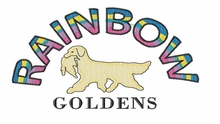 rainbowgoldens  Rainbow Goldens (small or large design)