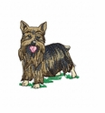 silky004 Silky Terrier (small or large design)